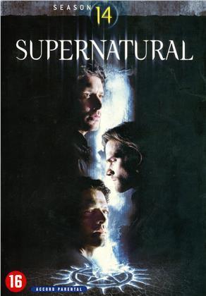 Supernatural - Saison 14 (5 DVDs)