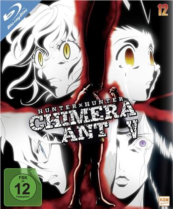 Hunter X Hunter - Vol. 12: Chimera Ant V (2011) (2 Blu-rays)