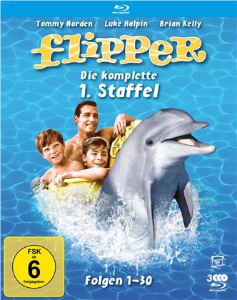 Flipper - Staffel 1 (Fernsehjuwelen, Schuber, 3 Blu-rays)