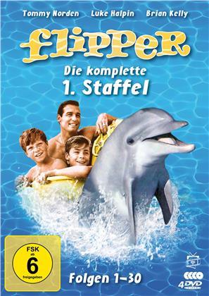 Flipper - Staffel 1 (Fernsehjuwelen, 4 DVDs)