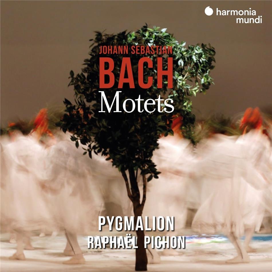 Pygmalion, Raphael Pichon & Johann Sebastian Bach (1685-1750) - Motets