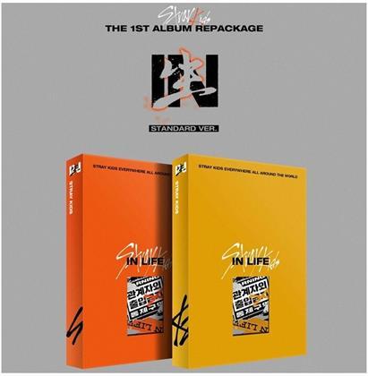 Stray Kids (K-Pop) - Vol.1 Repackaged Album: in Life