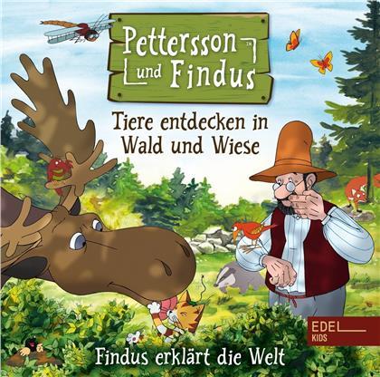 Pettersson Und Findus - Pettersson Und Findus - Das Hörspiel zum Buch