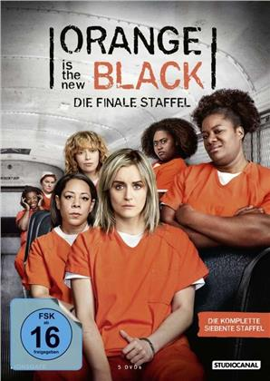 Orange is the New Black - Staffel 7 - Die finale Staffel (5 DVDs)