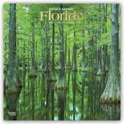 Florida Wild & Scenic 2021 - 16-Monatskalender