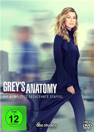 Grey's Anatomy - Staffel 16 (6 DVDs)