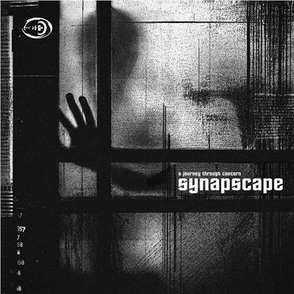 Synapscape - A Journey Through Concern