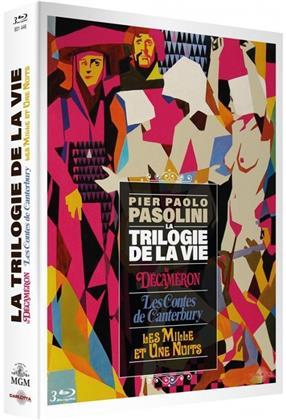 La trilogie de la vie - Pier Paolo Pasolini - Le Décaméron / Les Contes de Canterbury / Les mille et une nuits (3 Blu-rays)