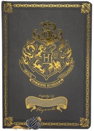 Harry Potter - A5 Chunky Foil Notebook
