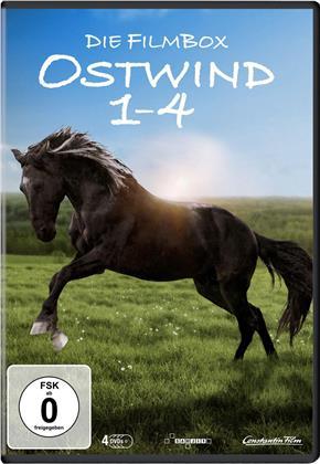 Ostwind 1-4 - Die Filmbox (4 DVDs)