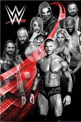 WWE Superstars Swoosh Maxi Poster