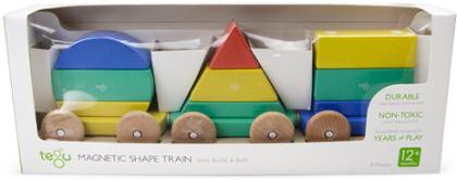 tegu Baby Big Shape Train 9 Teile