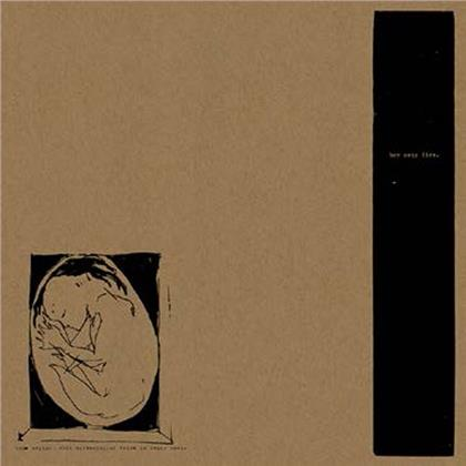Boysetsfire - This Crying, This Screaming, My Voice Is Being Born (LP)