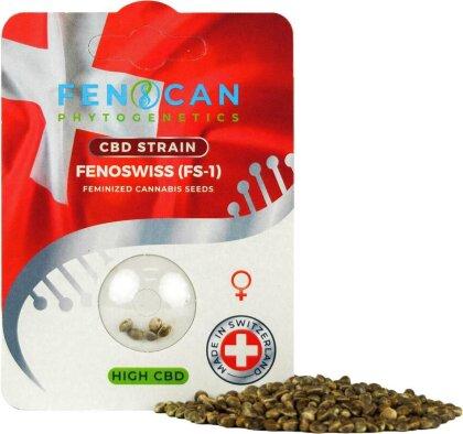 Fenoswiss CBD Hanfsamen – feminisiert (3 Samen) - CBD-Gehalt: 6 – 8% THC-Gehalt: 0.2 – 0.3%