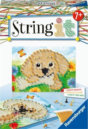 String it Mini Dogs