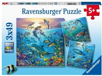 Tierwelt des Ozeans - 3x49 Teile Puzzles