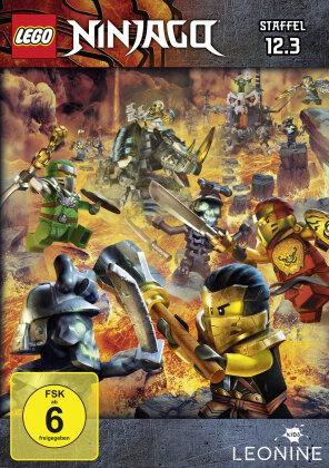 LEGO Ninjago: Masters of Spinjitzu - Staffel 12.3