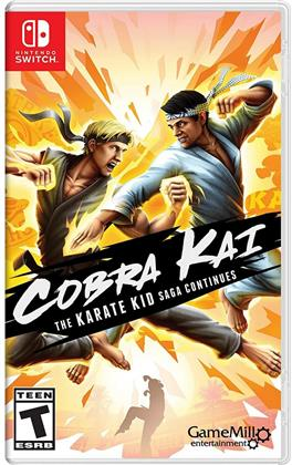 Cobra Kai Karate Kid Saga