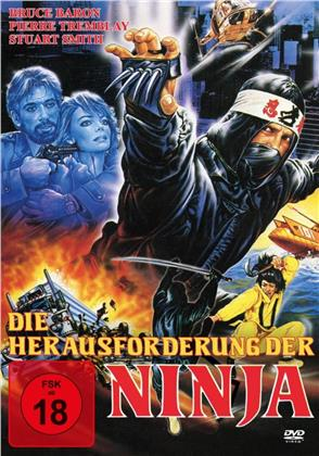 Die Herausforderung der Ninja (1986)