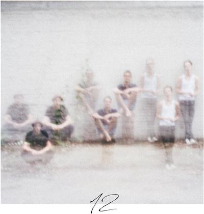 Annenmaykantereit - 12 (LP)