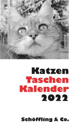 Katzen Taschenkalender 2022