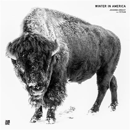 Johannes Brecht - Winter In America (LP)