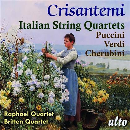 Raphael Quartet, Britten Quartet, Giacomo Puccini (1858-1924), Giuseppe Verdi (1813-1901) & Luigi Cherubini (1760-1842) - Crisantemi - Italian String Quartets