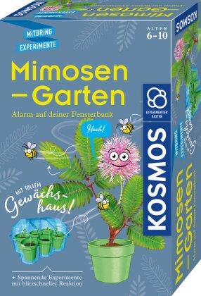 Mimosen-Garten (Experimentierkasten)