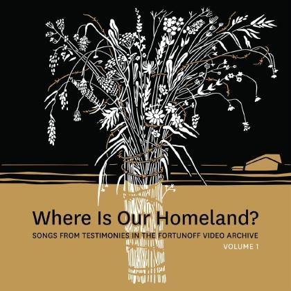 Zisl Slepovitch & Sasha Lurje - Where Is Our Homeland? (LP)