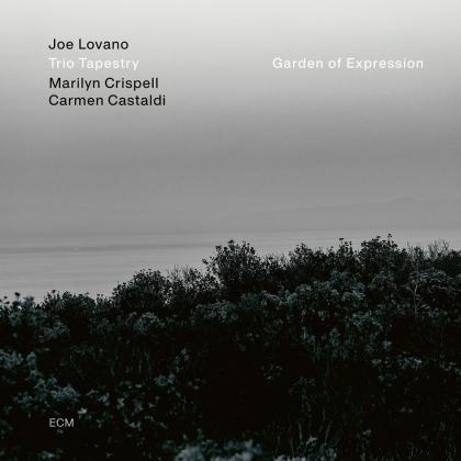 Joe Lovano & Trio Tapestry - Garden Of Expression