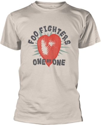 Foo Fighters - One By One