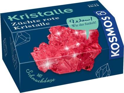 Kristalle - Züchte rote Kristalle (Experimentierkasten)