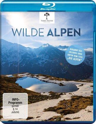 Wilde Alpen (2020)