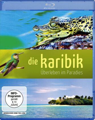 Die Karibik - Überleben im Paradies