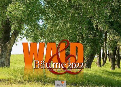 WALD UND BÄUME Kalender 2022