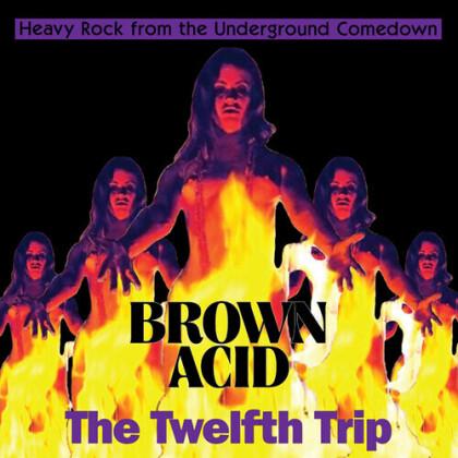 Brown Acid - The Twelfth Trip (LP)