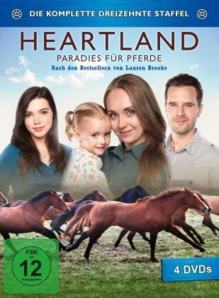Heartland - Paradies für Pferde - Staffel 13 (4 DVDs)