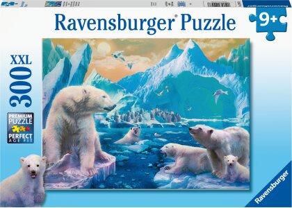 Im Reich der Eisbären (Kinderpuzzle)