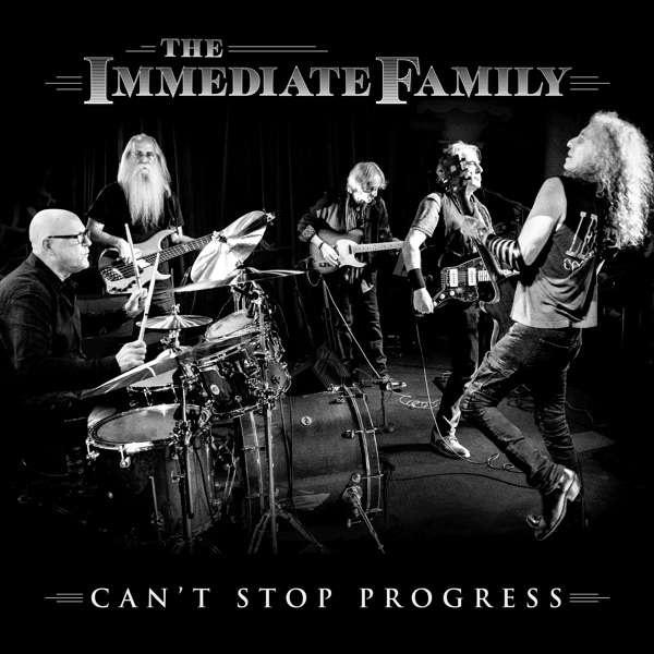 The Immediate Family (Kortschmar/Wachtel/Sklar/Kunkel) - Can't Stop Progress