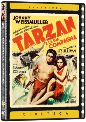 Tarzan e la compagna (1934) (Cineteca Avventura, n/b)