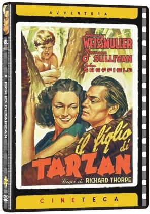 Il figlio di Tarzan (1939) (Cineteca Avventura, n/b)