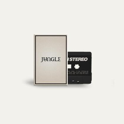 Jungle (UK) - Loving In Stereo