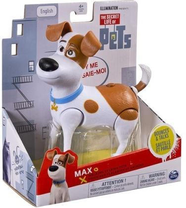 Pets: Walking & Talking Max