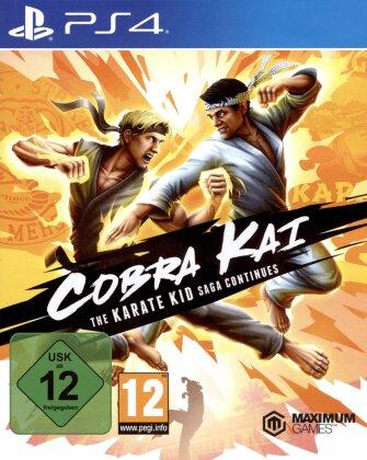 Cobra Kai - The Karate Kid Saga Continues