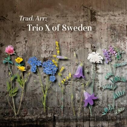 Trio X Of Sweden - Trad. Arr:
