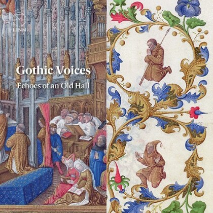 Gothic Voices - Echoes Of An Old Hall