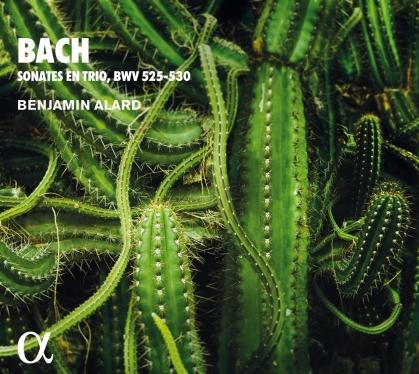 J.S. Bach & Benjamin Alard - Trio Sonatas For Organ BWV 525-530 - Sonates En Trio (2021 Reissue)