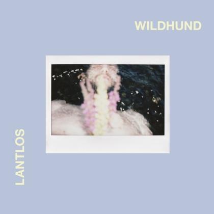 Lantlos - Wildhund (Digipack)