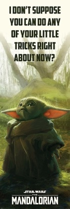 Star Wars The Mandalorian Special Tricks Door Poster