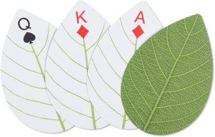 Huckleberry Leaf Cards (Spielkarten)
